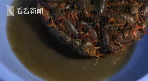 不法商贩图快竟用洁厕液洗龙虾!或影响人体免疫系统
